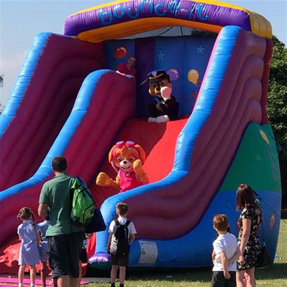 Bouncy Castles, Soft Play and Whack a Mole Service Article Image